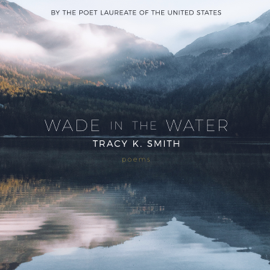 Wade in the Water: Poems (Unabridged) audiobook