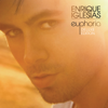 Enrique Iglesias - Why Not Me? artwork