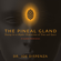 Dr. Joe Dispenza - The Pineal Gland: Tuning in to Higher Dimensions of Time and Space