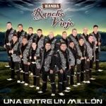 Banda Rancho Viejo de Julio Arámburo - Una Entre un Millón