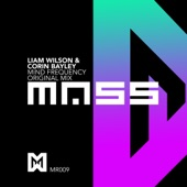 Liam Wilson - Mind Frequency