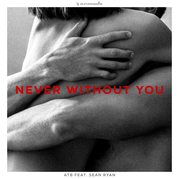 Never Without You (feat. Sean Ryan) - Single