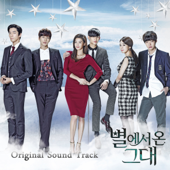 My Love From the Star (Original Television Soundtrack)