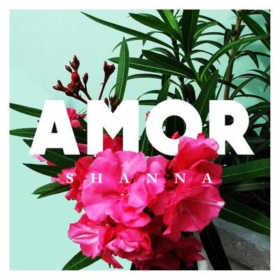 Amor - Single - Shanna