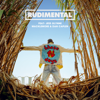 These Days feat Jess Glynne Macklemore Dan Caplen - Rudimental mp3