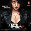 Hate Story 2 EP