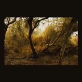 Melnyk: Fallen Trees