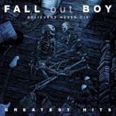 Sugar, We're Goin' Down - Fall Out Boy