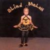 Blind Melon, Blind Melon