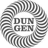 Dungen - Intro