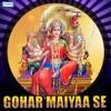 Gohar Maiyaa Se