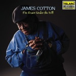 James Cotton - Young Fashioned Ways