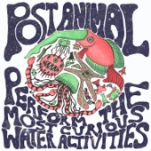 Post Animal - Goggles