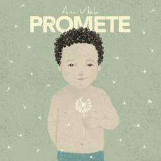 Baixar Promete - Ana Vilela