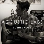 Acoustic Labs - Scene Fourteen: Blade Runner Meditation