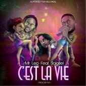 Mr. Leo - C'est la vie feat. Salatiel