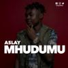 Aslay - Mhudumu artwork