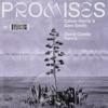 Promises David Guetta Remix Single
