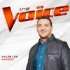 Kaleb Lee - Amazed (The Voice Performance)  artwork