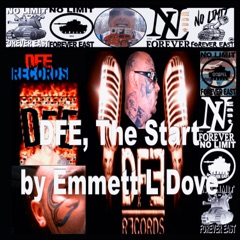DFE Records, The Start