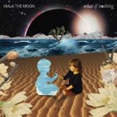 Walk the Moon - Kamikaze