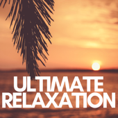 Ultimate Relaxation: Insomnia, Stress Management, Total Relax, Deep Sleep, Stress Relief