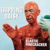 Tripping Daisy - Trip Along