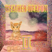 Weather Weapon - Box of Rice