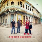 The Pedrito Martinez Group - Tributo a Santiago de Cuba (feat. Angélique Kidjo)