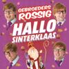Gebroeders Rossig - Hallo Sinterklaas kunstwerk