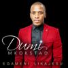 Dumi Mkokstad - Usibiyele artwork