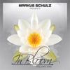 Markus Schulz Presents in Bloom - EP