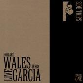 Jerry Garcia/Howard Wales - Venutian Blues (Live)