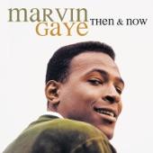 Marvin Gaye - Mama Loocie