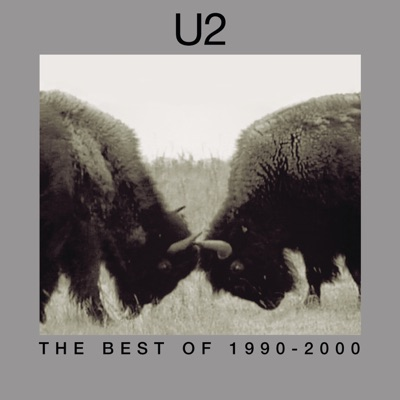 The Best of U2 (1990-2000) - U2