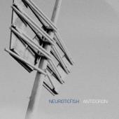 Antidoron-Neuroticfish