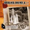 Sherlock Holmes & Co - Folge 36: Der Jungbrunnen, Episode 1 kunstwerk
