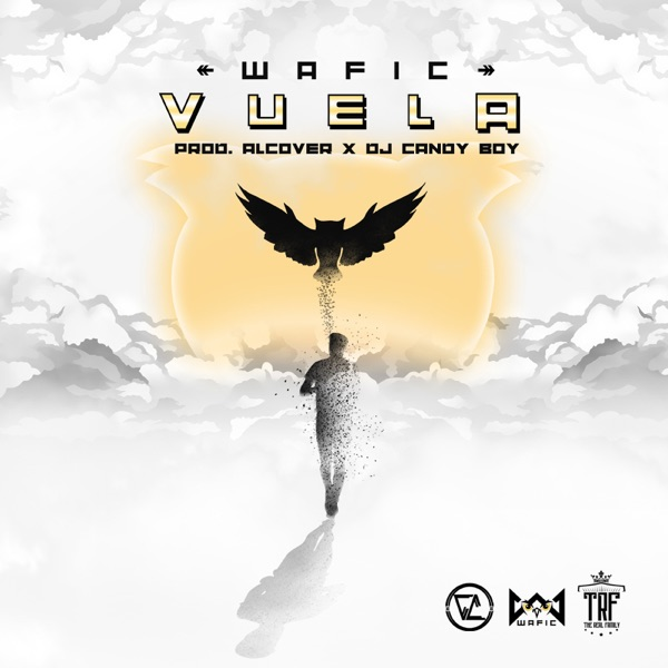Cover art for Vuela