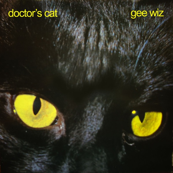 Doctor's Cat mit Feel the Drive