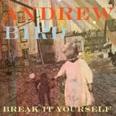 Andrew Bird - Eyeoneye