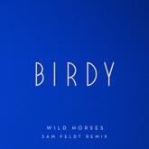 Wild Horses (Sam Feldt Remix) - Single