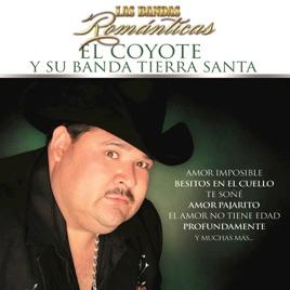 Las Bandas Romanticas De El Coyote Y Su Banda Tierra Santa En Apple