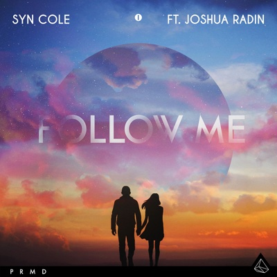 Follow Me (feat. Joshua Radin) - Single - Syn Cole album