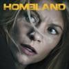 Homeland, Season 5 wiki, synopsis