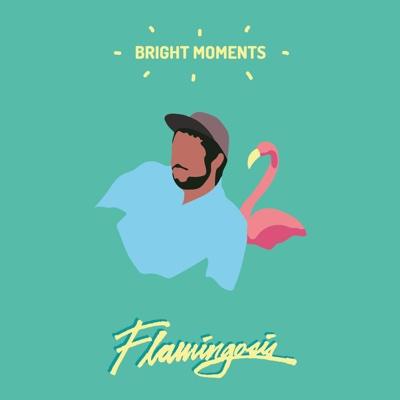 Bright Moments - Flamingosis album
