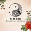 Ensemble de Musique Zen Relaxante - Feng Shui: Équilibre et harmonie – Musique pour le bien-être, Fond de musique pour tai-chi, Yoga, Relaxation, Sophrologie, Spa et méditation illustration