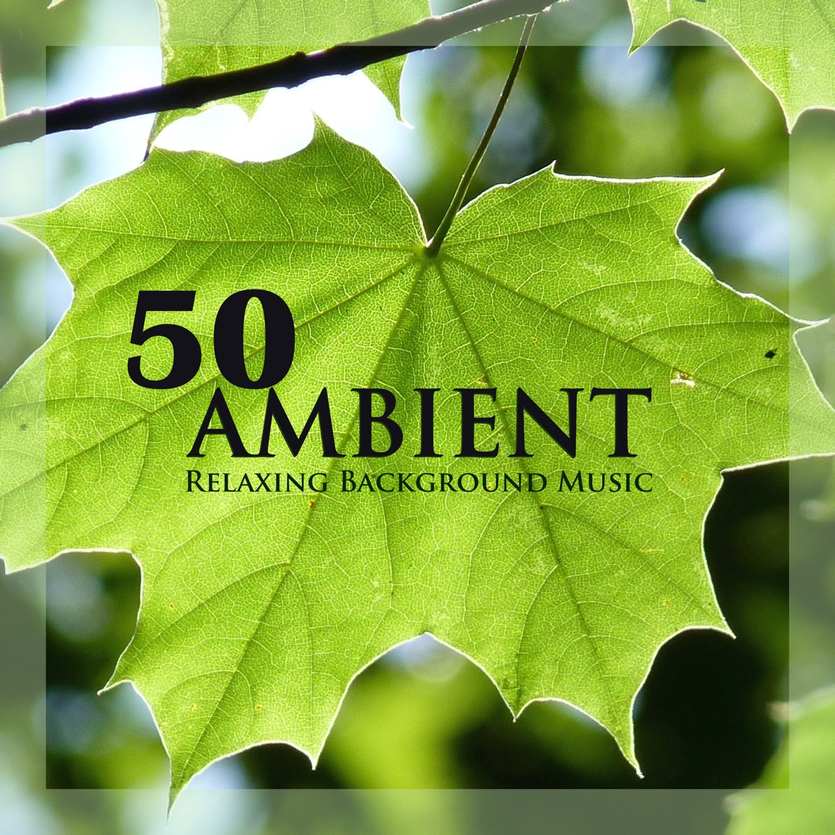50 Ambient - Relaxing Background Music & Instrumental