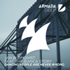 Jan Blomqvist - Dancing People Are Never Wrong (feat. The Bianca Story) artwork