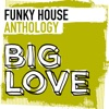 Big Love Funky House Anthology