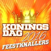 Koningsdag Feestknallers 2016